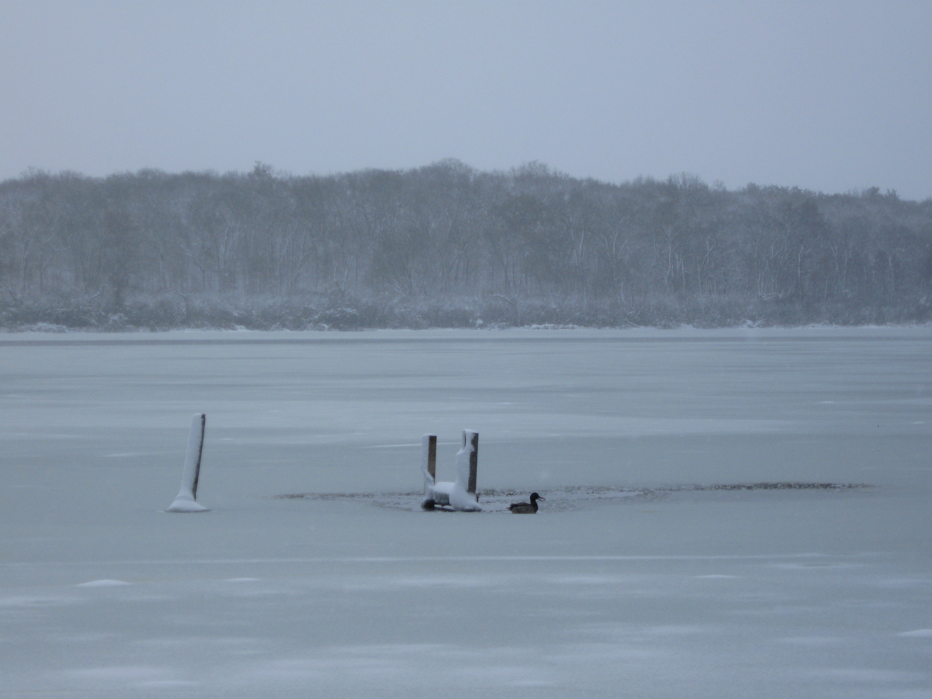 Lake Wingra On Cold December Day This >> December 2010 Wisconsin Fun Next Exit